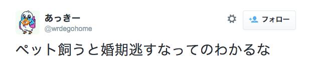 スクリーンショット 2015-03-06 11.48.59